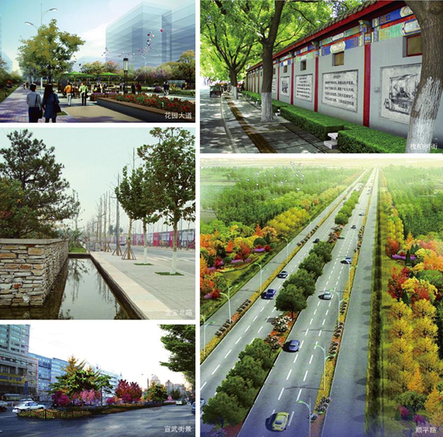 城市重要道路景观设计工作,充分展示了城市魅力,形成了协调统